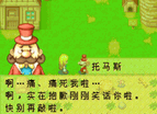 Arch Gba Bokujou Monogatari Mineral Town No Nakamatachi For Girl Chinese